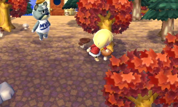 Animal Crossing: New Leaf screenshot 16