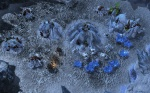 StarCraft II: Wings of Liberty thumb 1