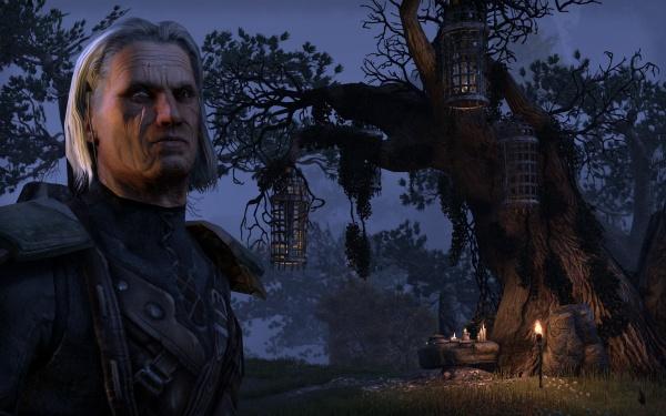 The Elder Scrolls Online screenshot 6