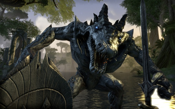 The Elder Scrolls Online screenshot 8