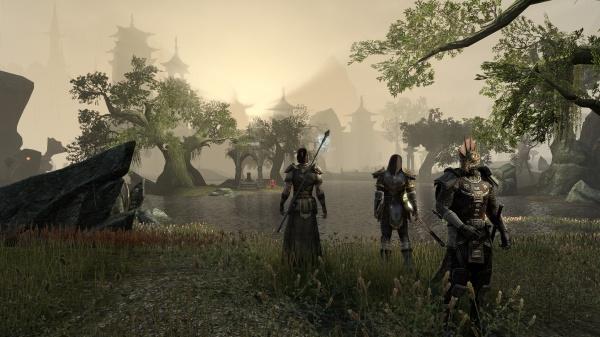 The Elder Scrolls Online screenshot 9