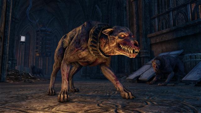 The Elder Scrolls Online screenshot 17