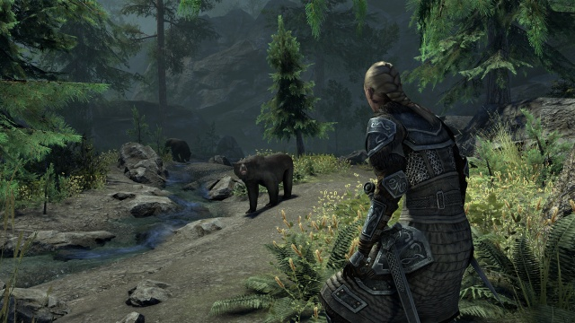 The Elder Scrolls Online screenshot 24