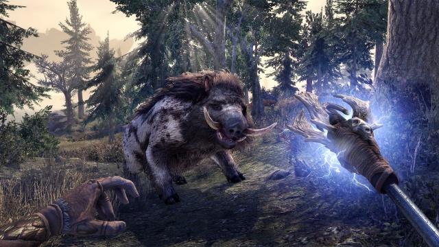 The Elder Scrolls Online: Tamriel Unlimited screenshot 25