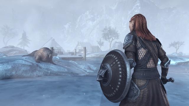 The Elder Scrolls Online: Tamriel Unlimited screenshot 26