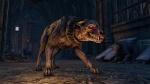 The Elder Scrolls Online thumb 17