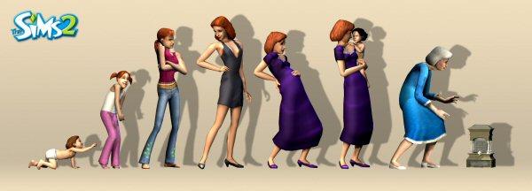 Female evolution
