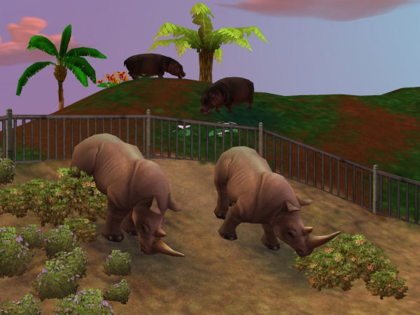Zoo Tycoon 2: African Adventure Screenshot 2 - PC - The