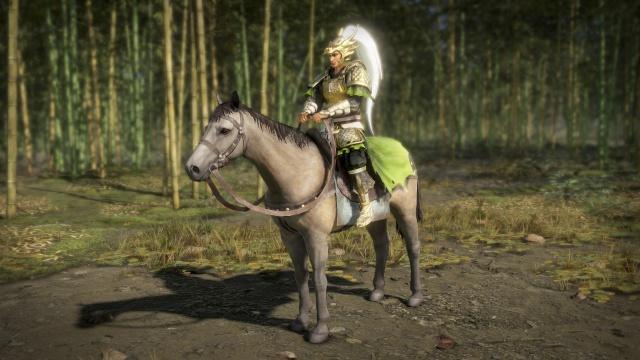 Dynasty Warriors 9 screenshot 15