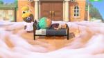 Animal Crossing: New Horizons thumb 47