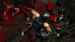 Ninja Gaiden 3 thumb 12