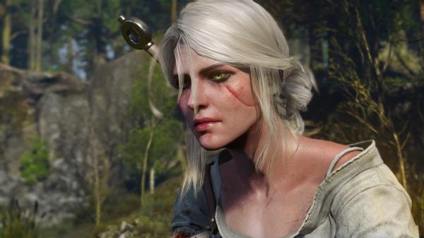 The Witcher 3: Wild Hunt screenshot 49