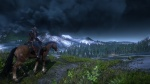 The Witcher 3: Wild Hunt thumb 15