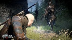 The Witcher 3: Wild Hunt thumb 22