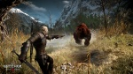 The Witcher 3: Wild Hunt thumb 31