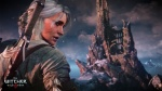 The Witcher 3: Wild Hunt thumb 38