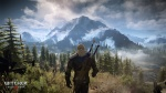 The Witcher 3: Wild Hunt thumb 39